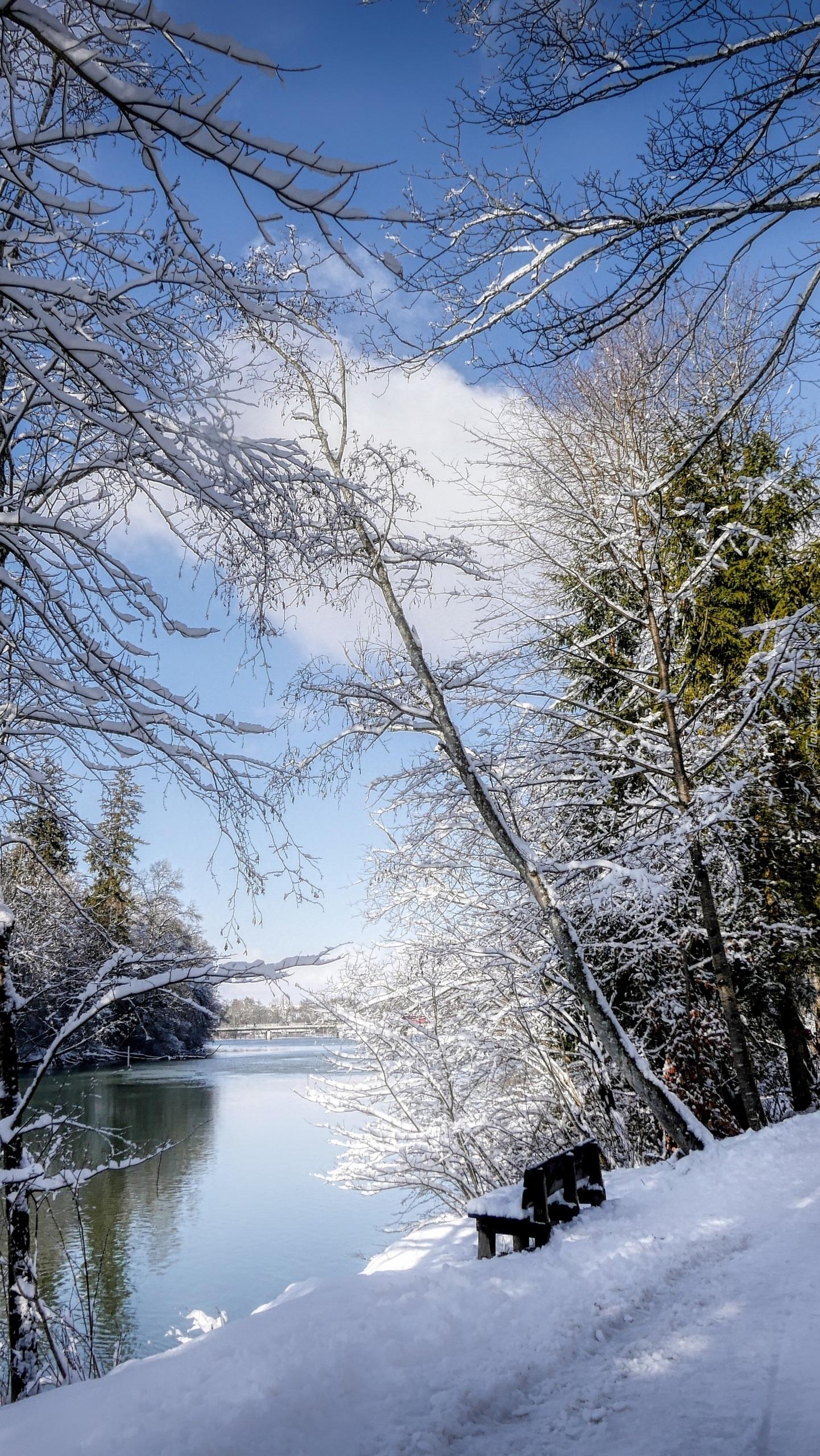 Ławka na zaśnieżonym brzegu rzeki