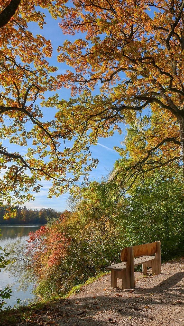 Ławka nad rzeką