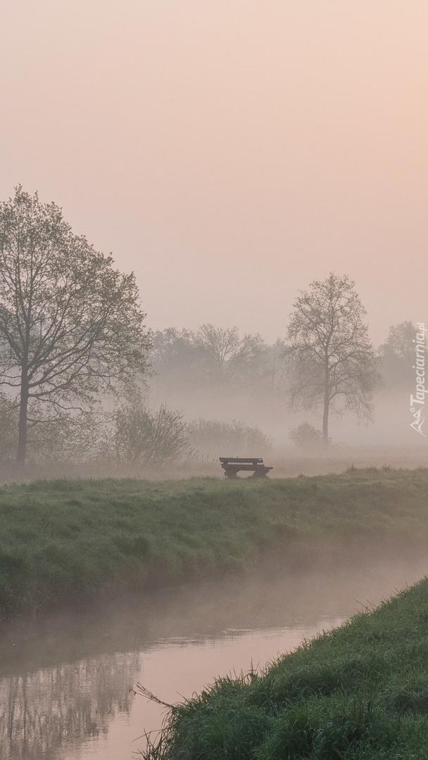 Ławka nad rzeką we mgle