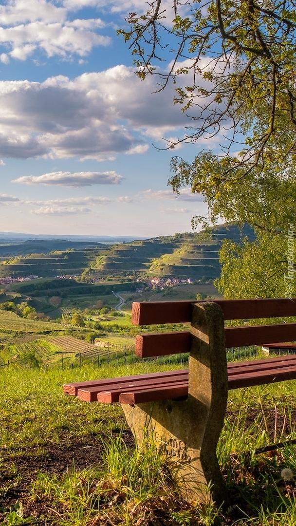 Ławka z widokiem na Vogtsburg