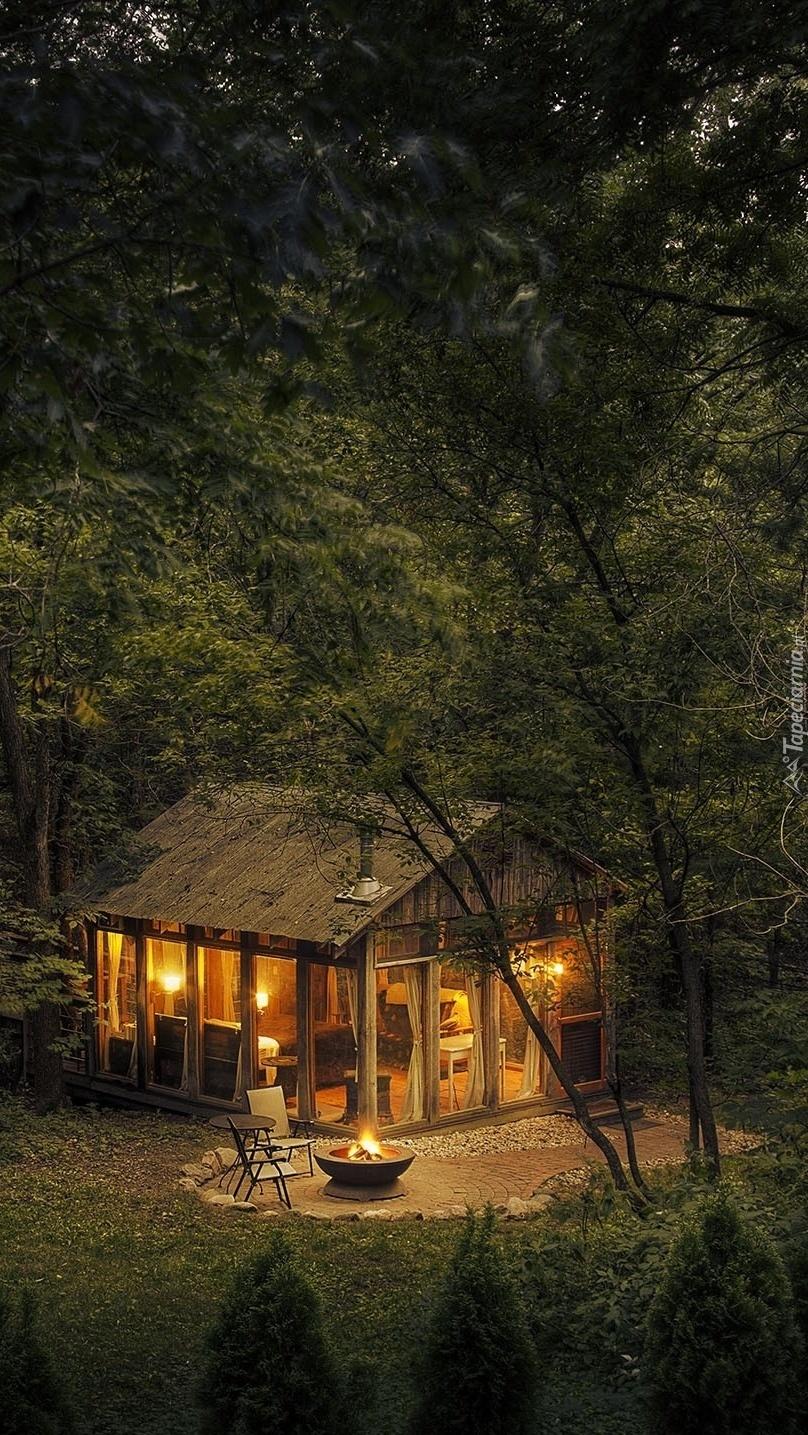 Leśny domek oświetlony nocą