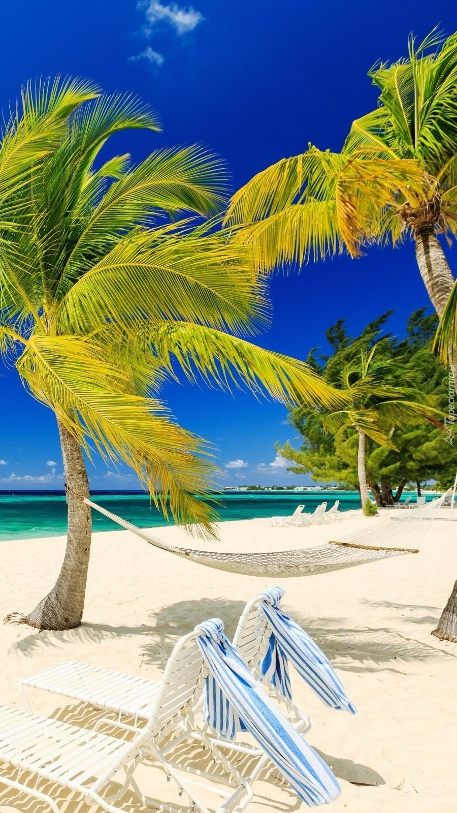 Letnie leniuchowanie w tropikach