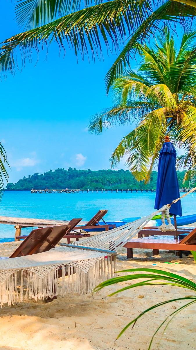 Leżaki i hamak na plaży
