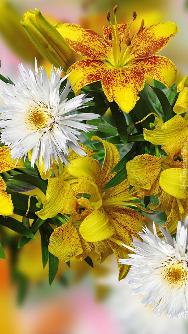 Lilie i białe kwiaty w grafice