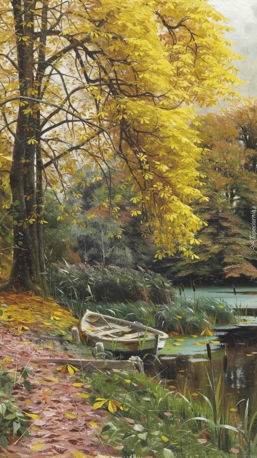 Łódka pod drzewem na brzegu rzeki