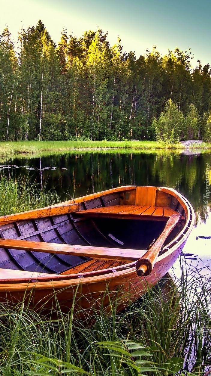 Łódka przy brzegu jeziora