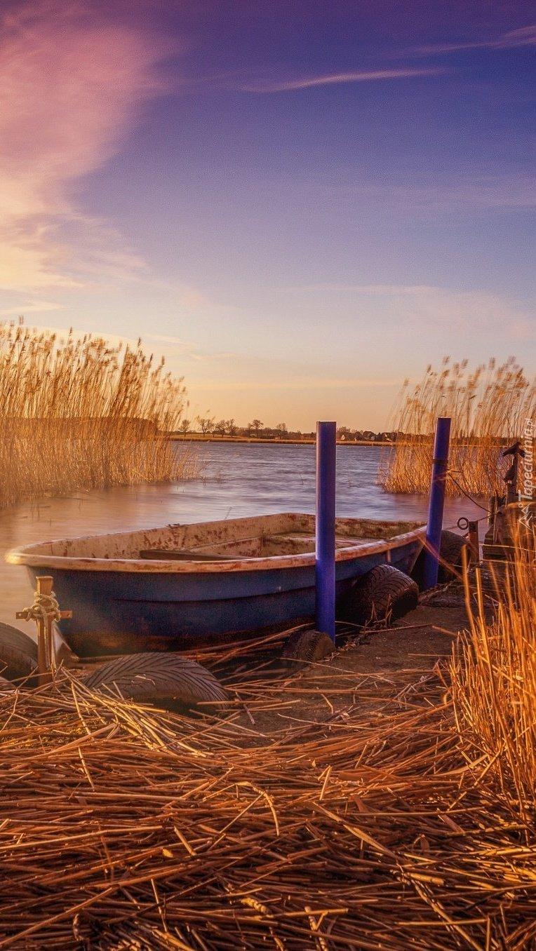 Łódka przy pomoście wśród traw