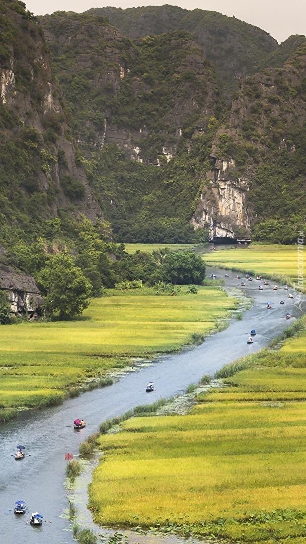 Łódki na rzece Ngo Dong w Wietnamie