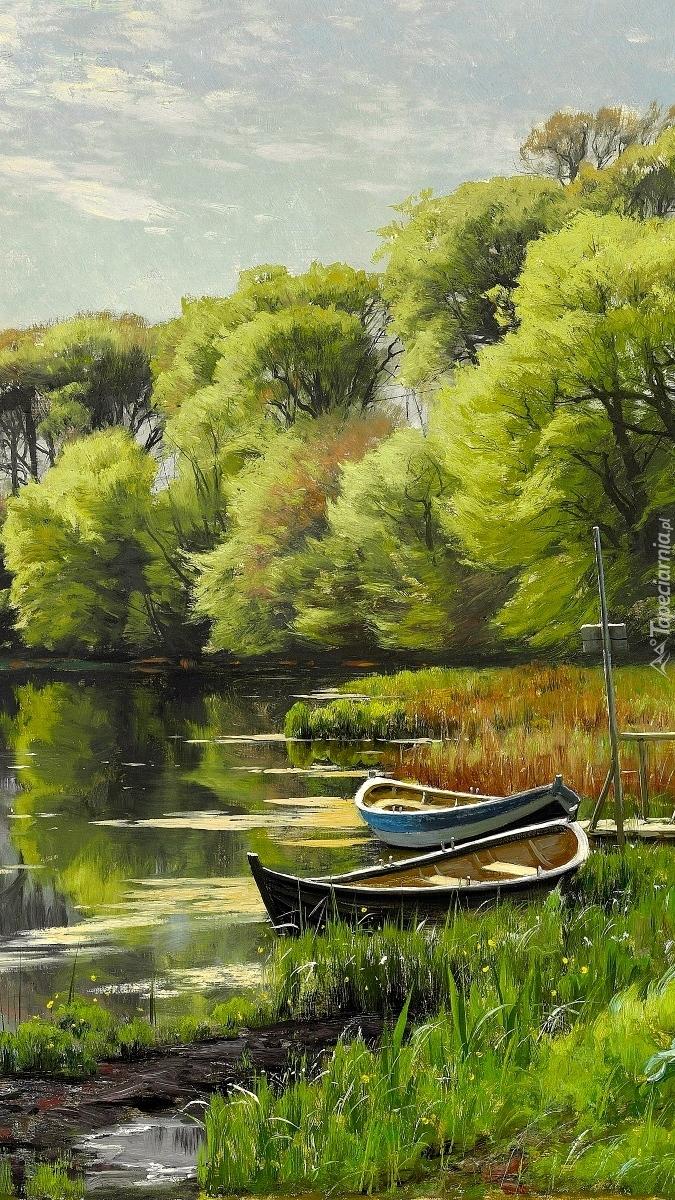 Łódki w szuwarach na rzece