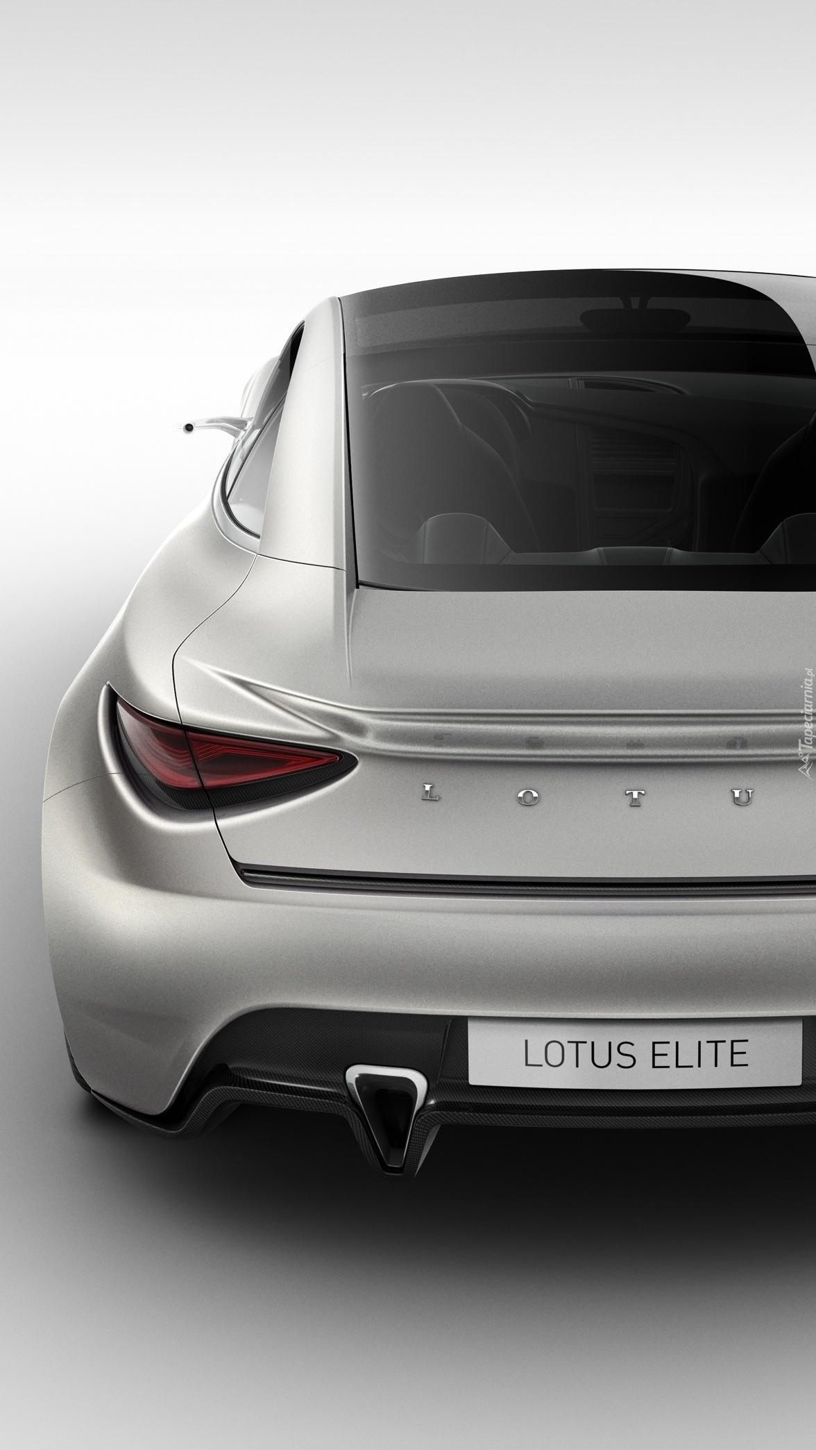 Lotus Elite od tyłu