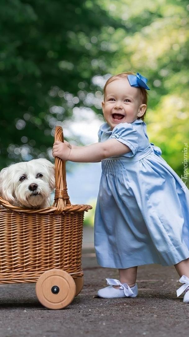 Mała dziewczynka z psem w wózku