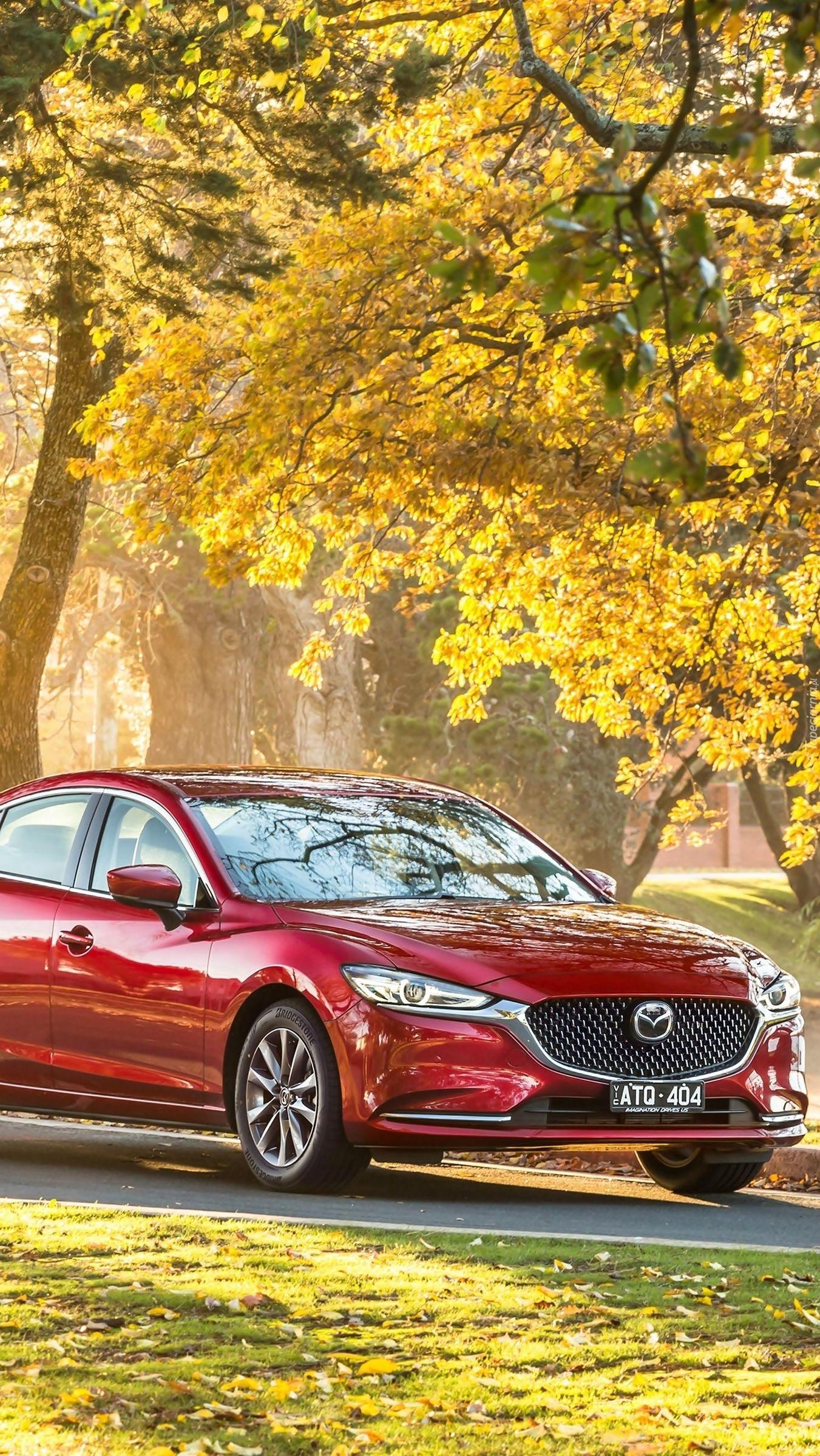 Mazda 6 pod drzewem