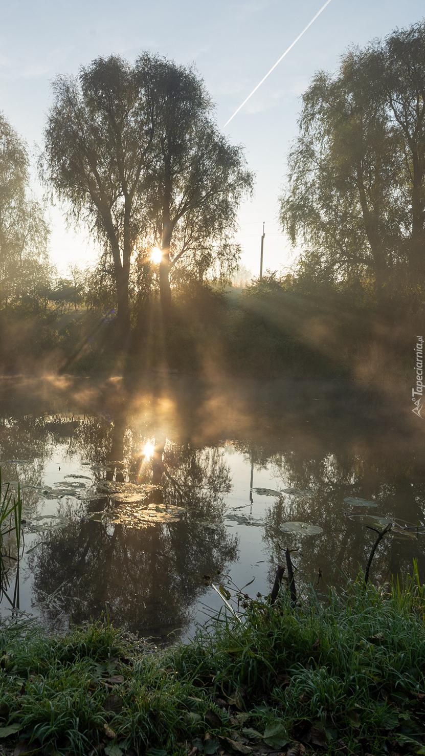 Mgła i przebijające się promienie słońca nad rzeką