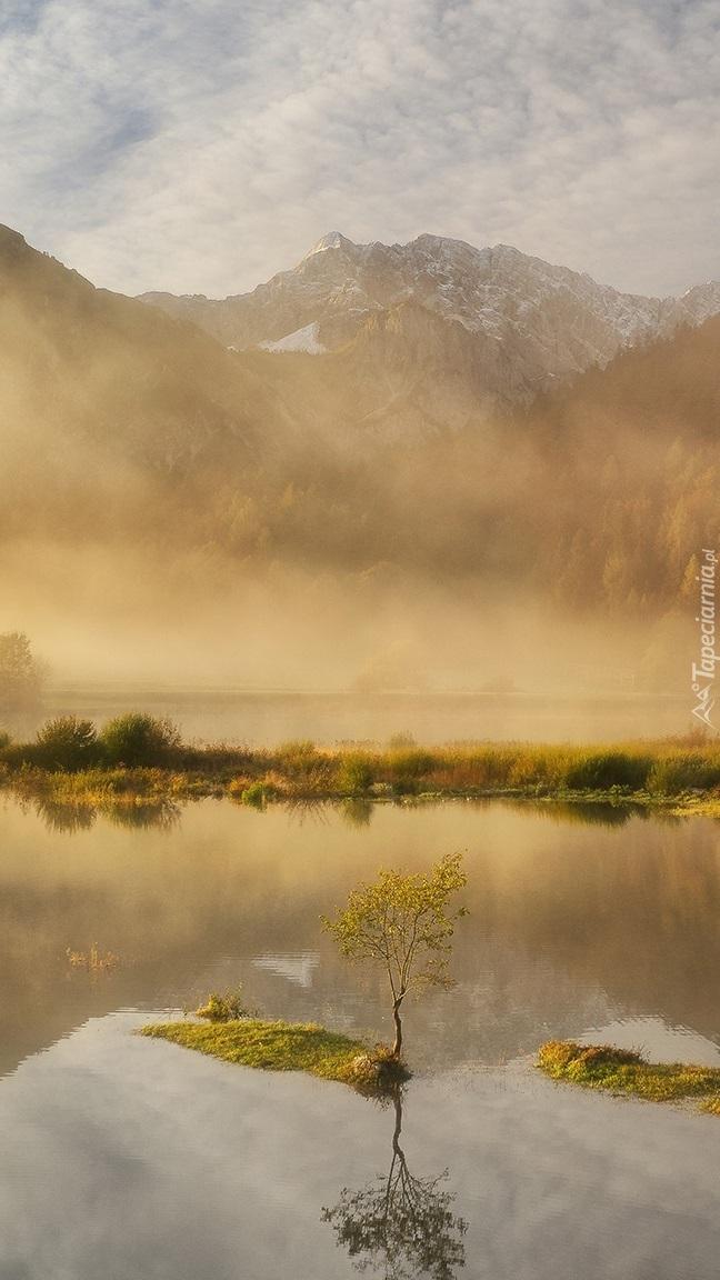 Mgła nad jeziorem w górach