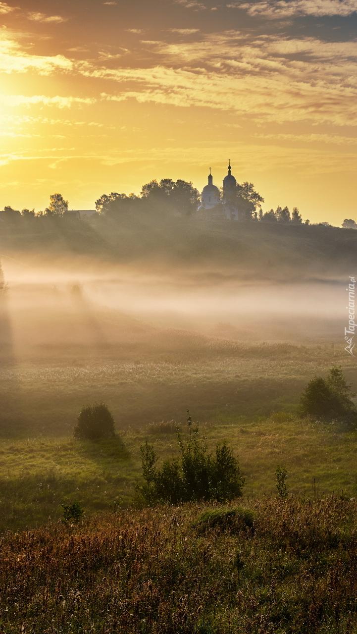 Mgła nad łąką