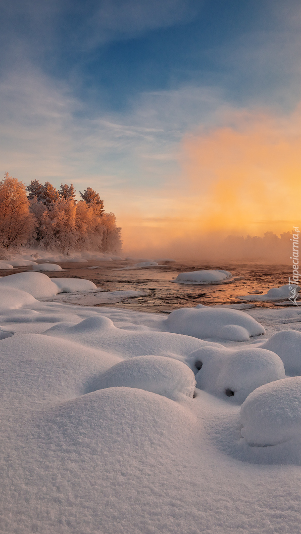 Mgła nad rzeką i lasem zimą