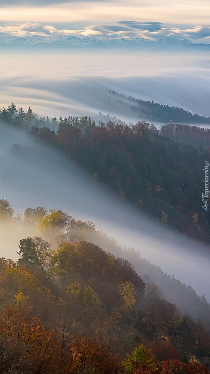 Mgła nad szczytami gór