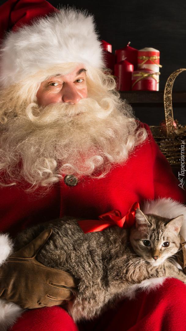 Mikołaj z burym kotem