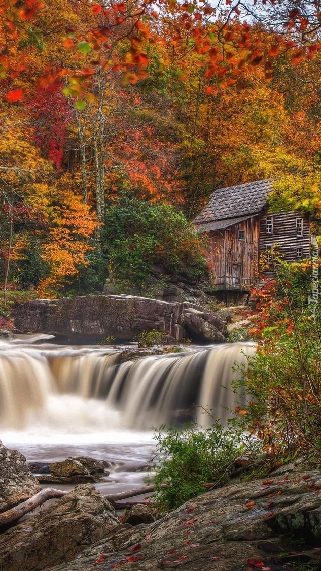 Młyn nad rzeką w lesie