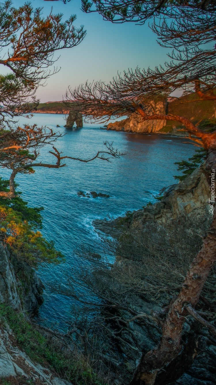 Morze Japońskie