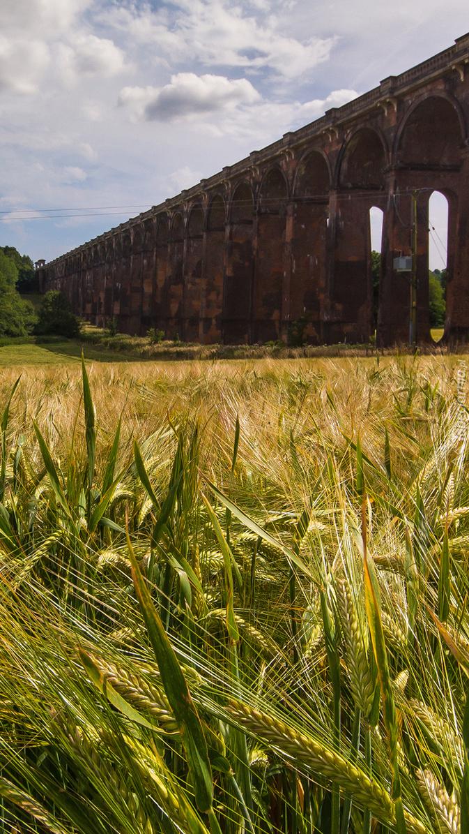 Most kolejowy nad polem