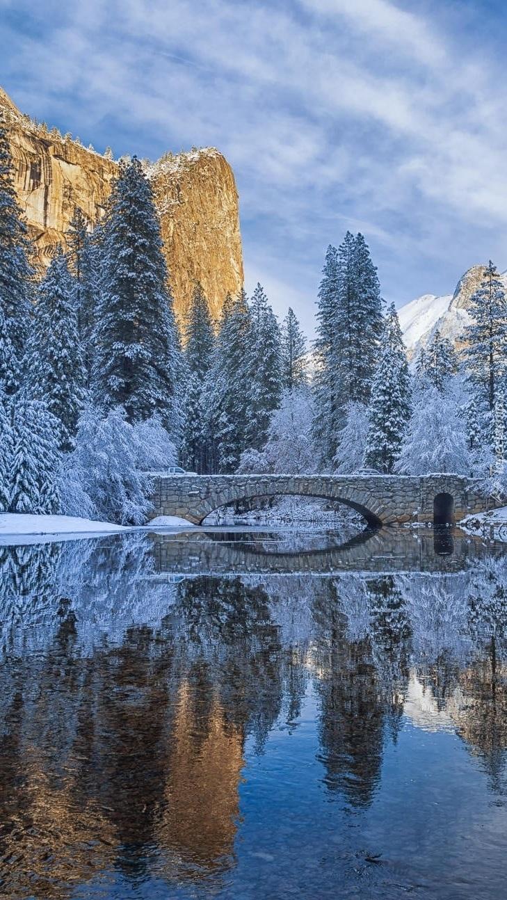 Most na tle oszronionych drzew