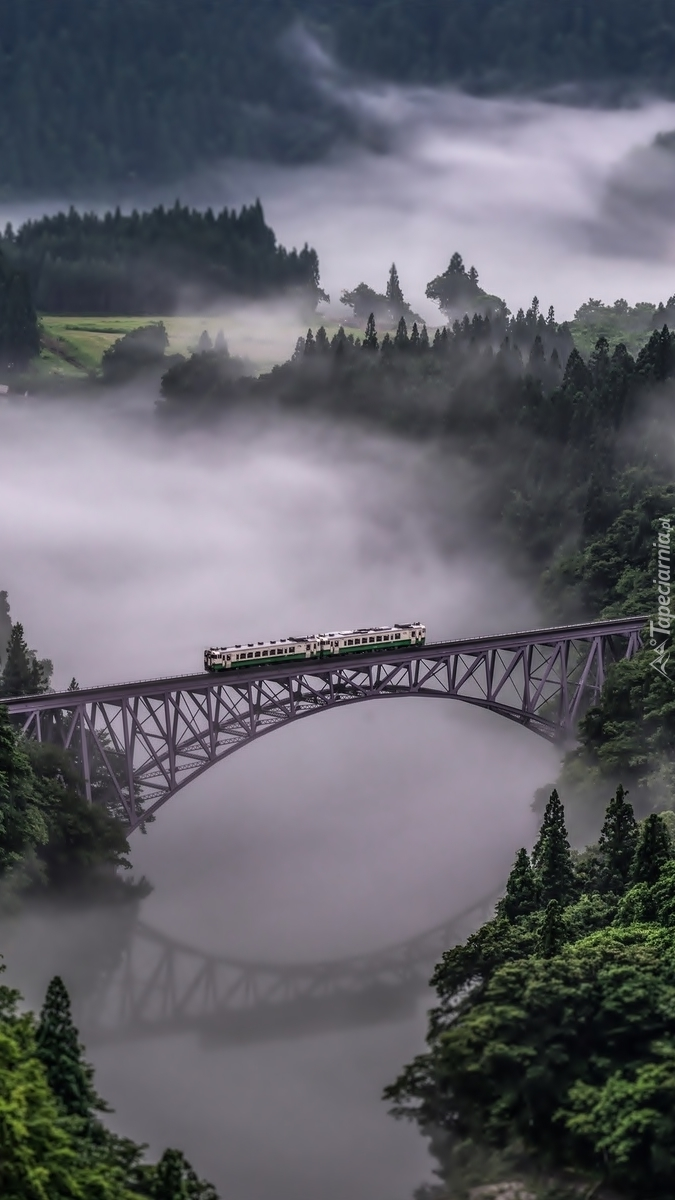 Most Tadami River Bridge nad rzeką Tadami we mgle
