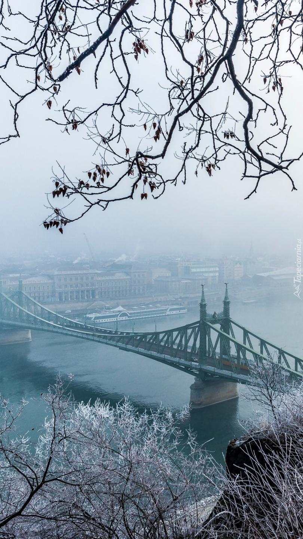 Most Wolności nad rzeką Dunaj