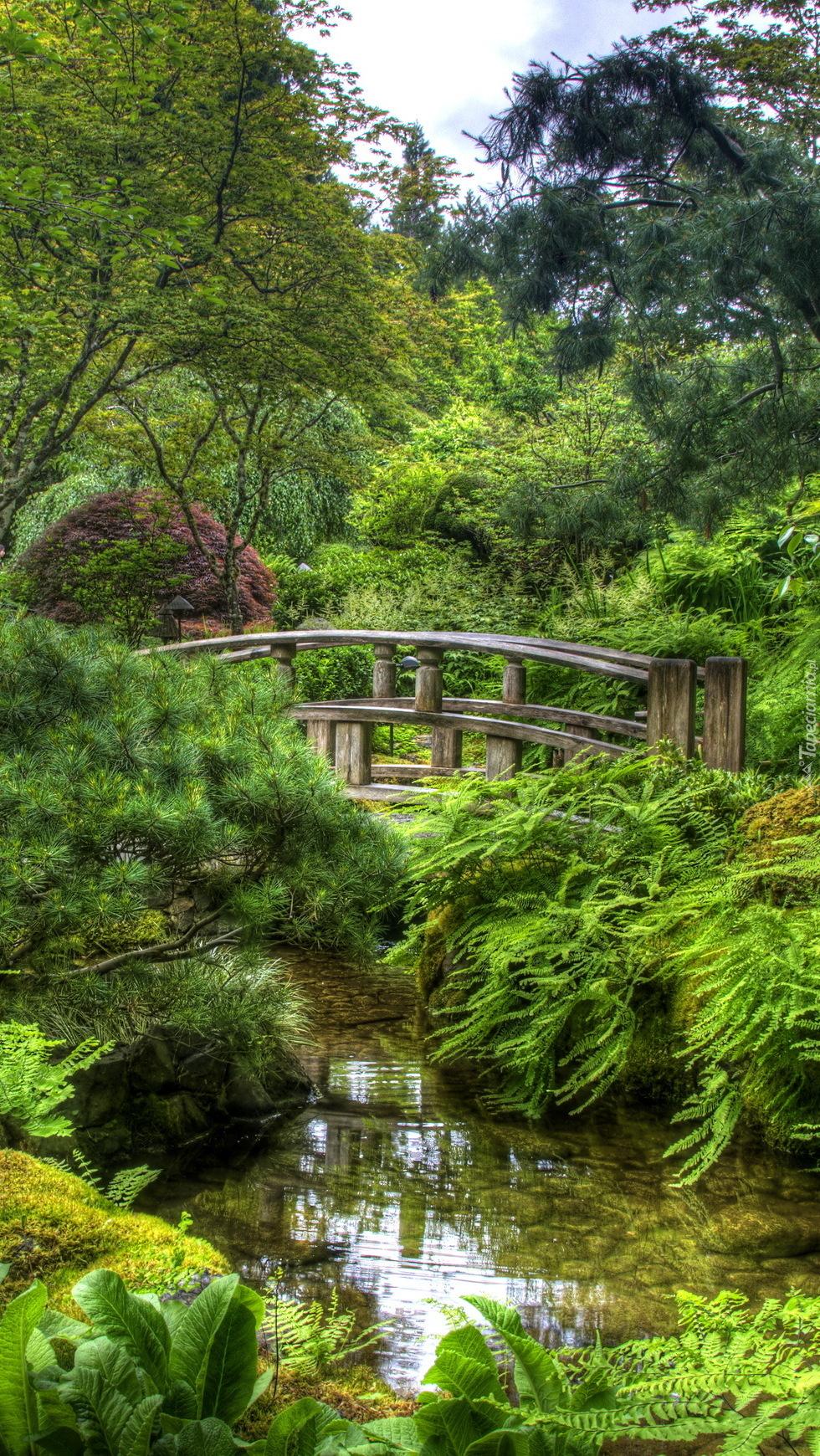 Mostek nad rzeką w ogrodzie