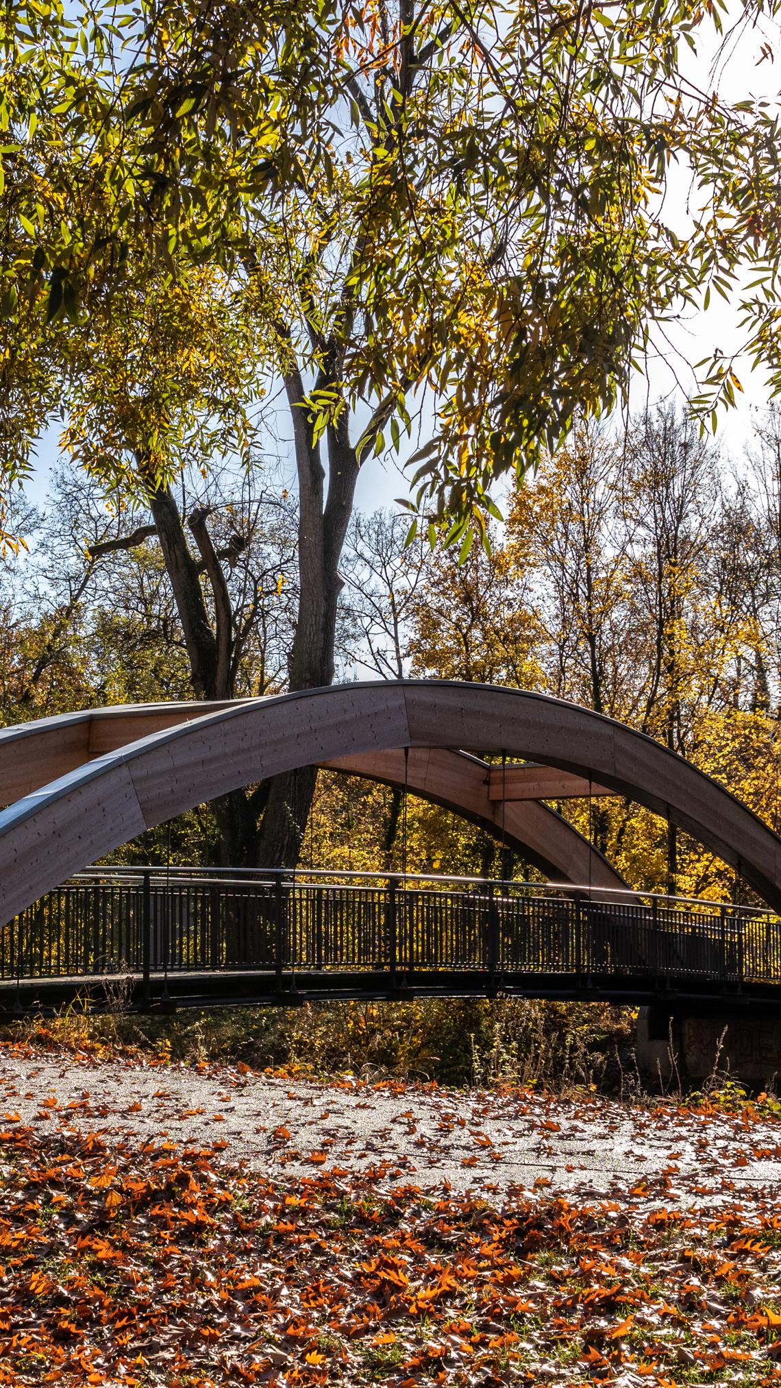 Mostek w jesiennym parku
