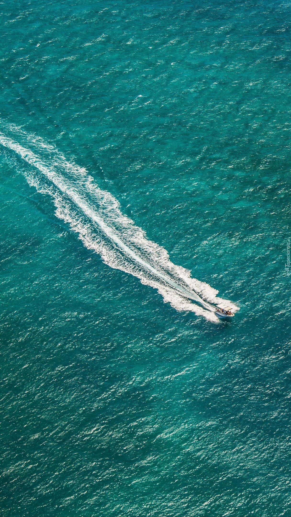 Motorówka na morzu