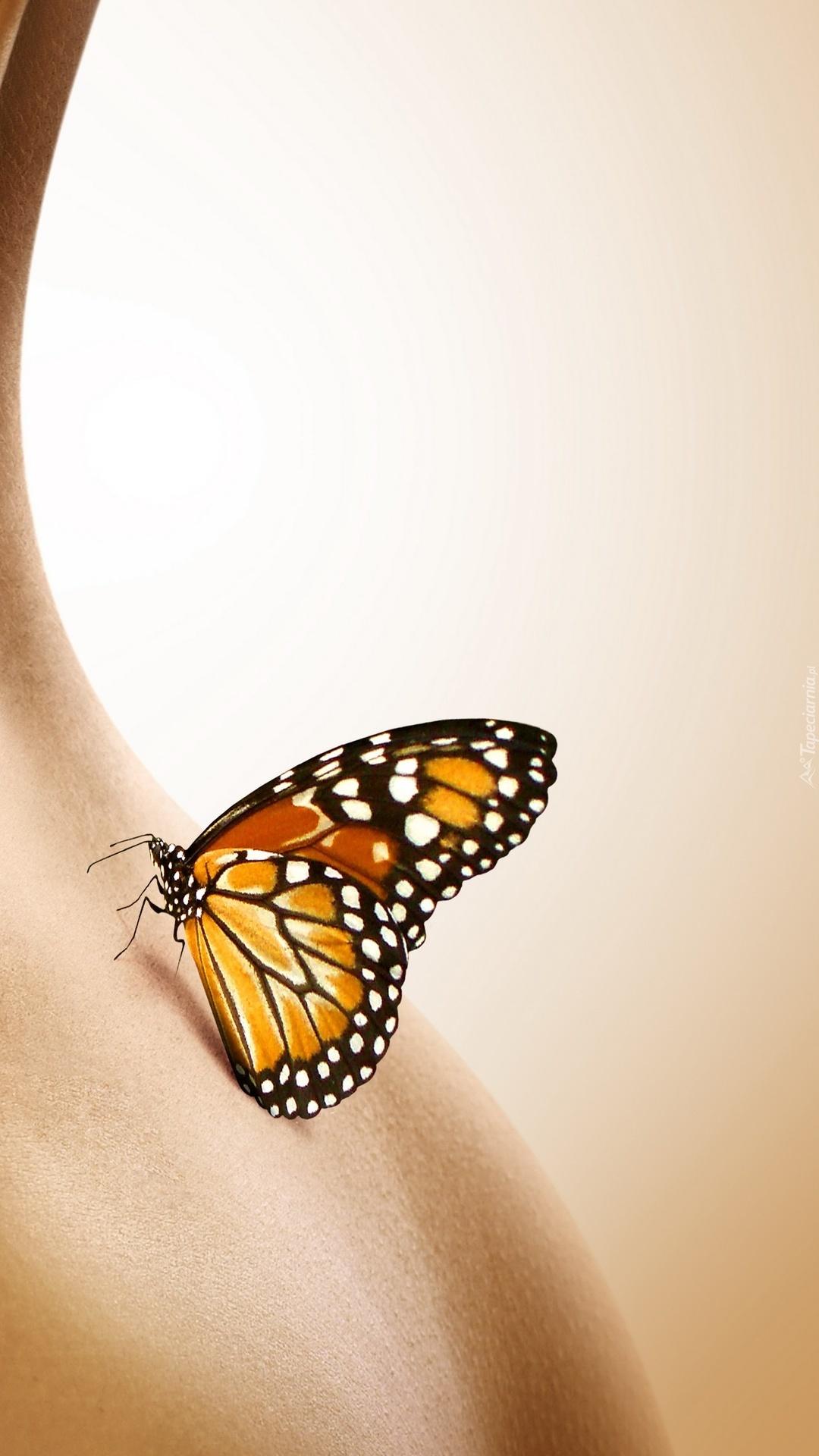 Motyl na ciele kobiety