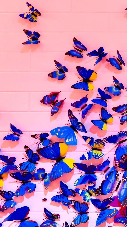 Motyle w grafice 2D