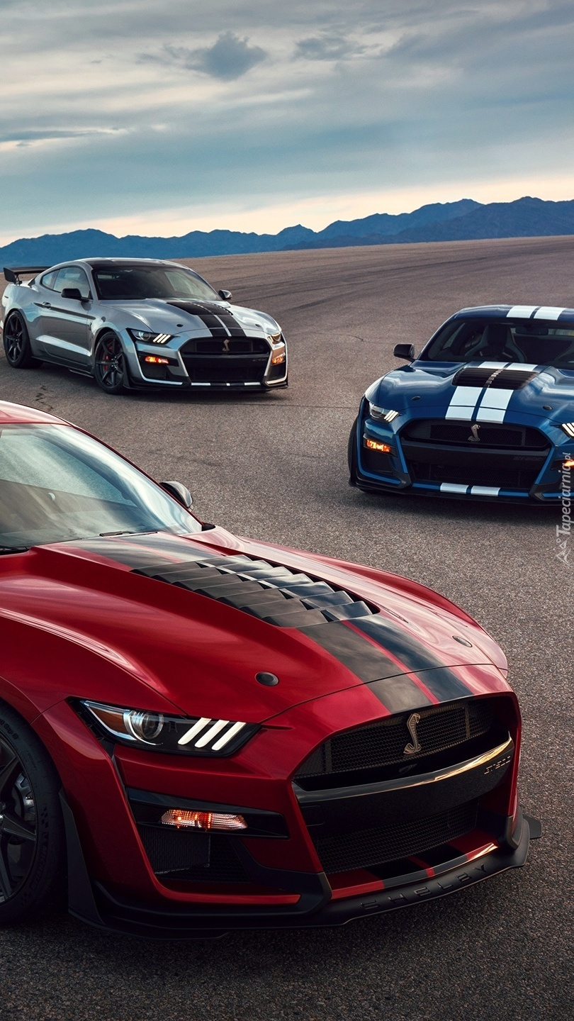Mustangi Shelby GT500