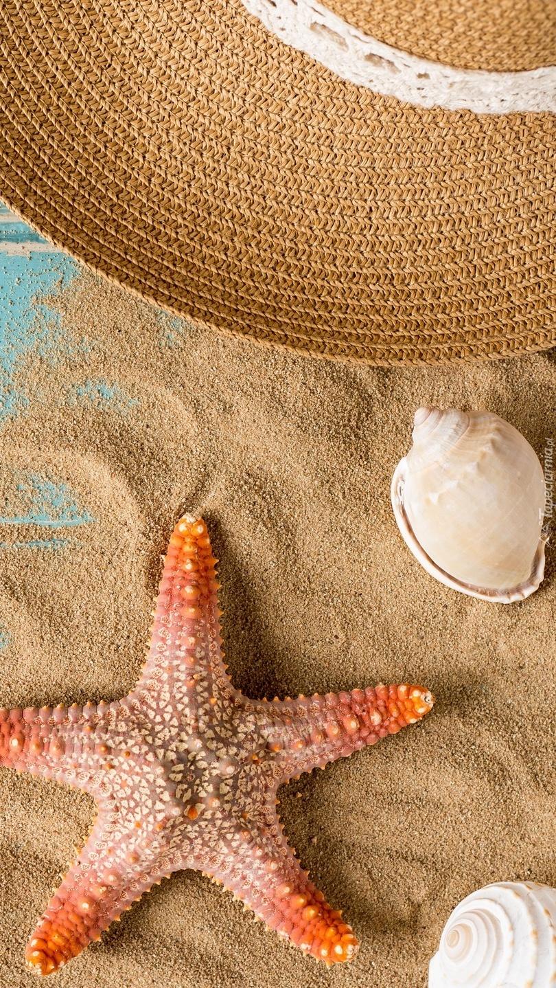 Muszelki i rozgwiazda na piasku