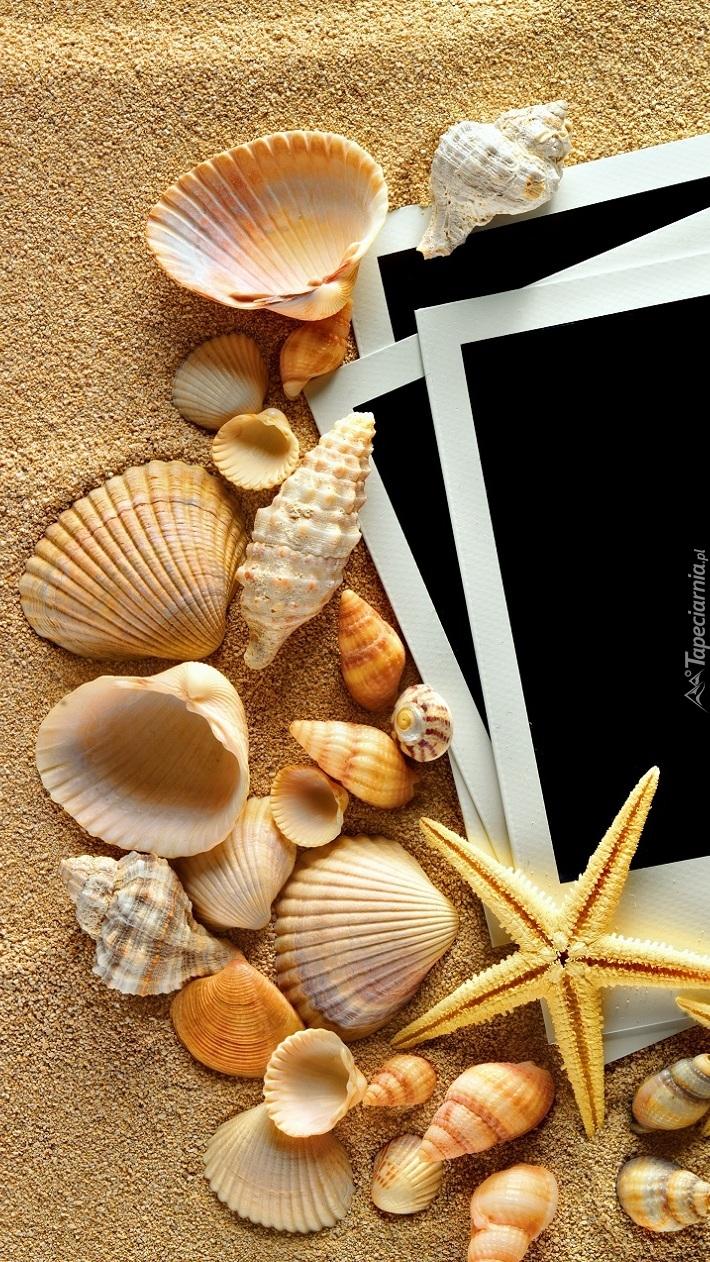 Muszelki i zdjęcia na piasku