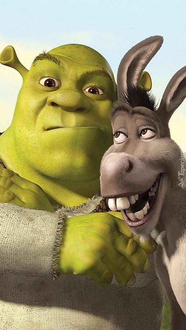 Nie gniewaj się Shreku