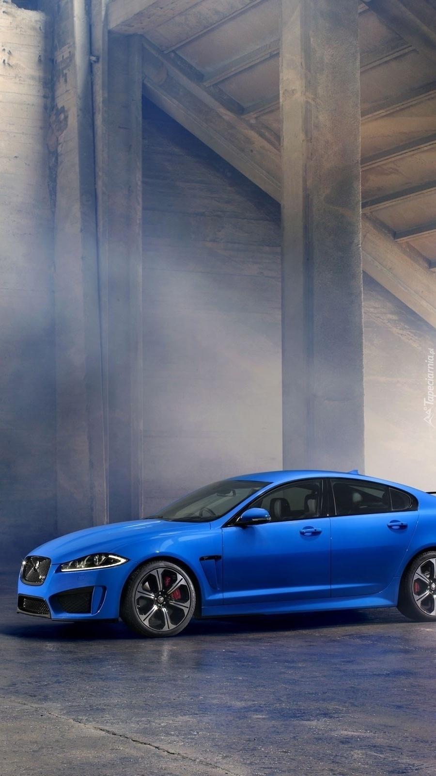 Niebieski Jaguar