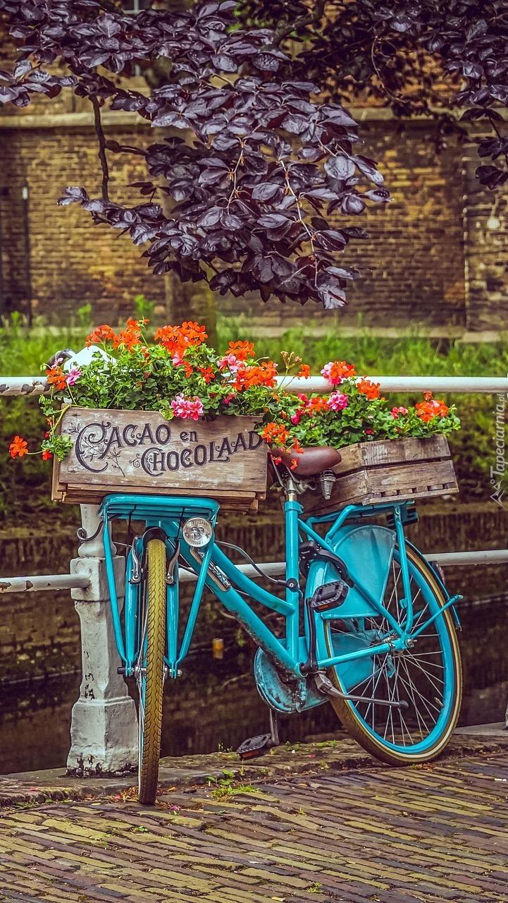 Niebieski rower ze skrzynkami kwiatów
