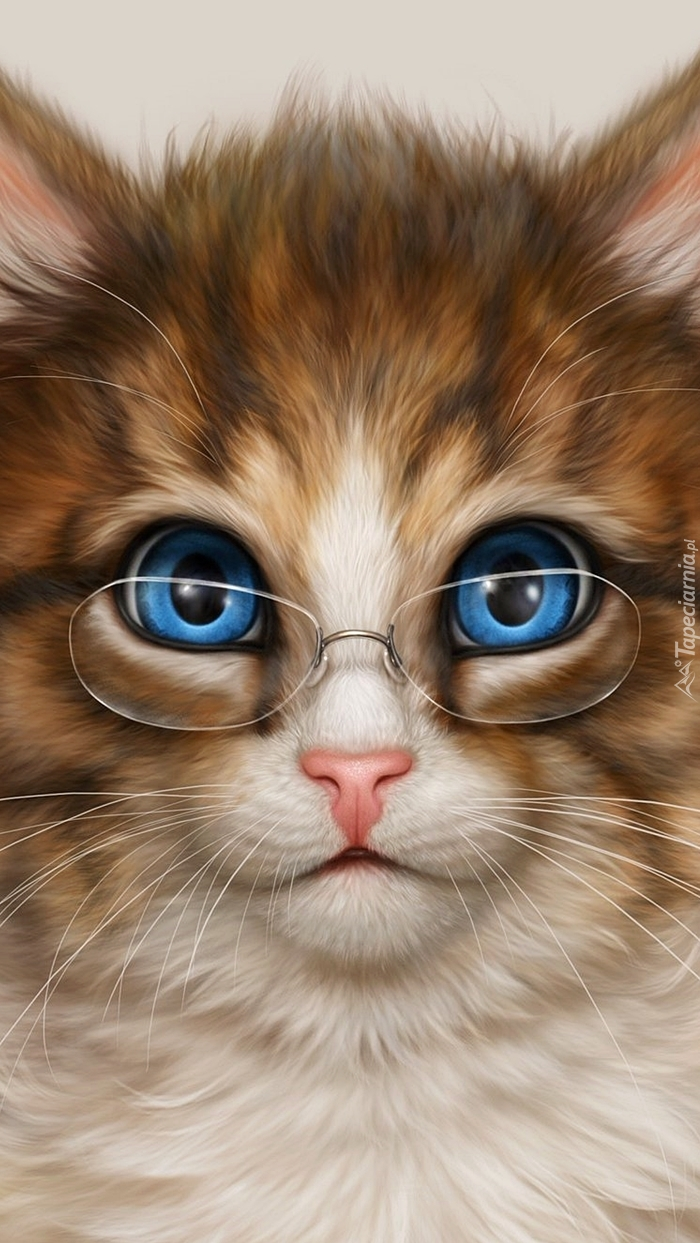 Niebieskooki kot w okularach