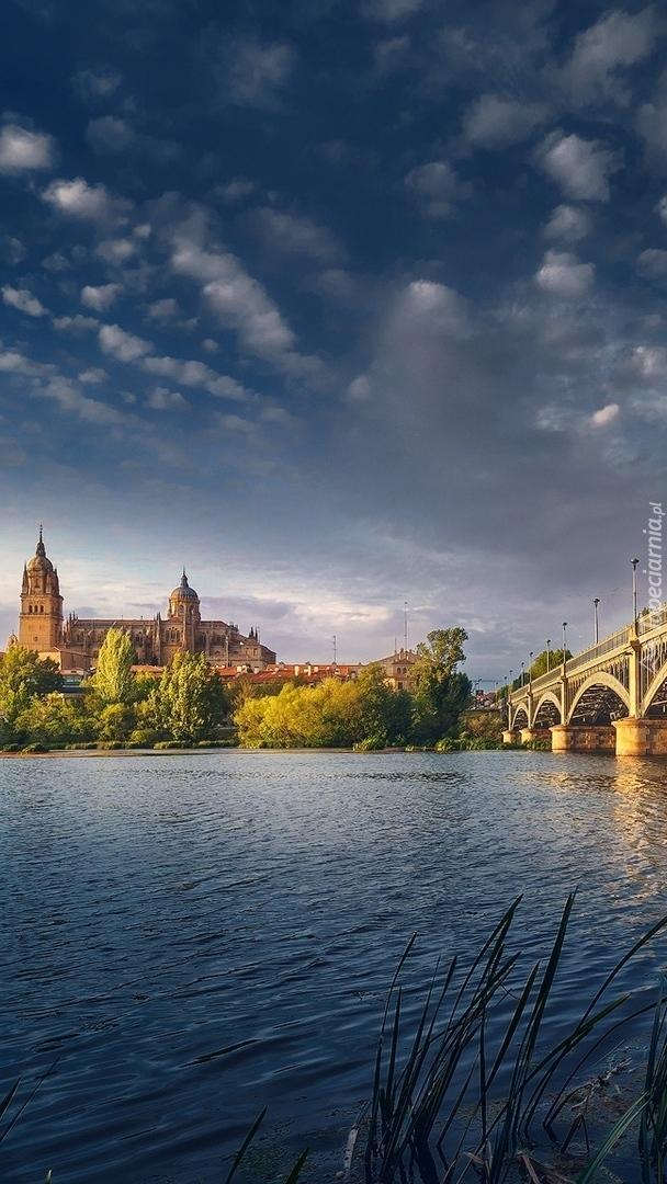 Nowa Katedra nad rzeką Tormes