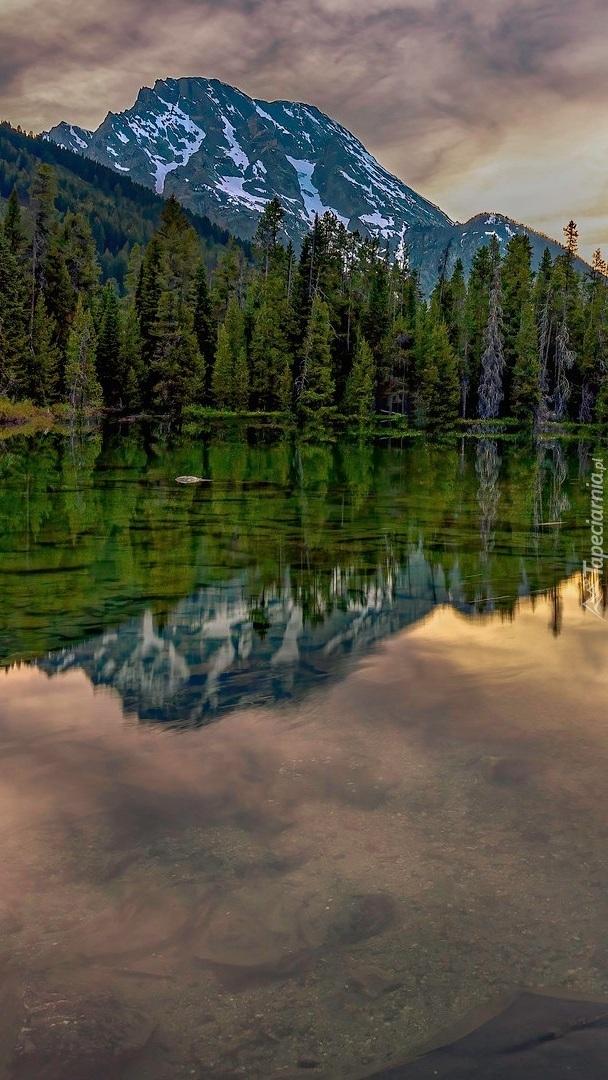 Odbicie drzew i gór w jeziorze