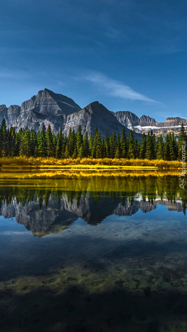 Odbicie gór i drzew w jeziorze