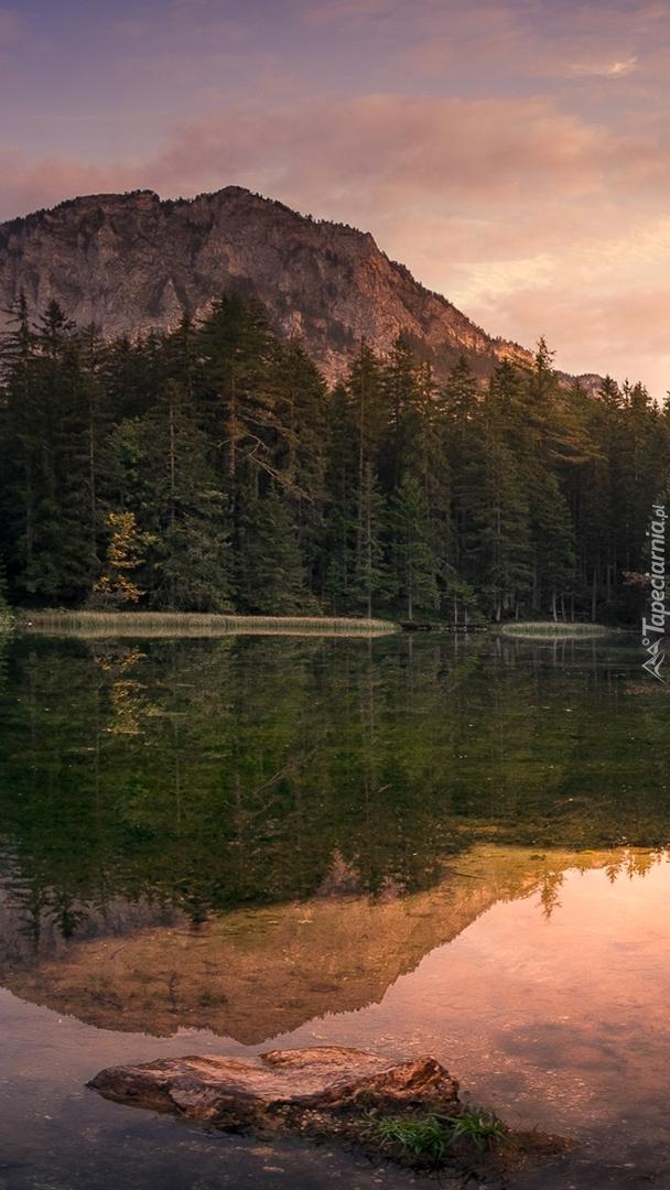 Odbicie gór i lasu w jeziorze