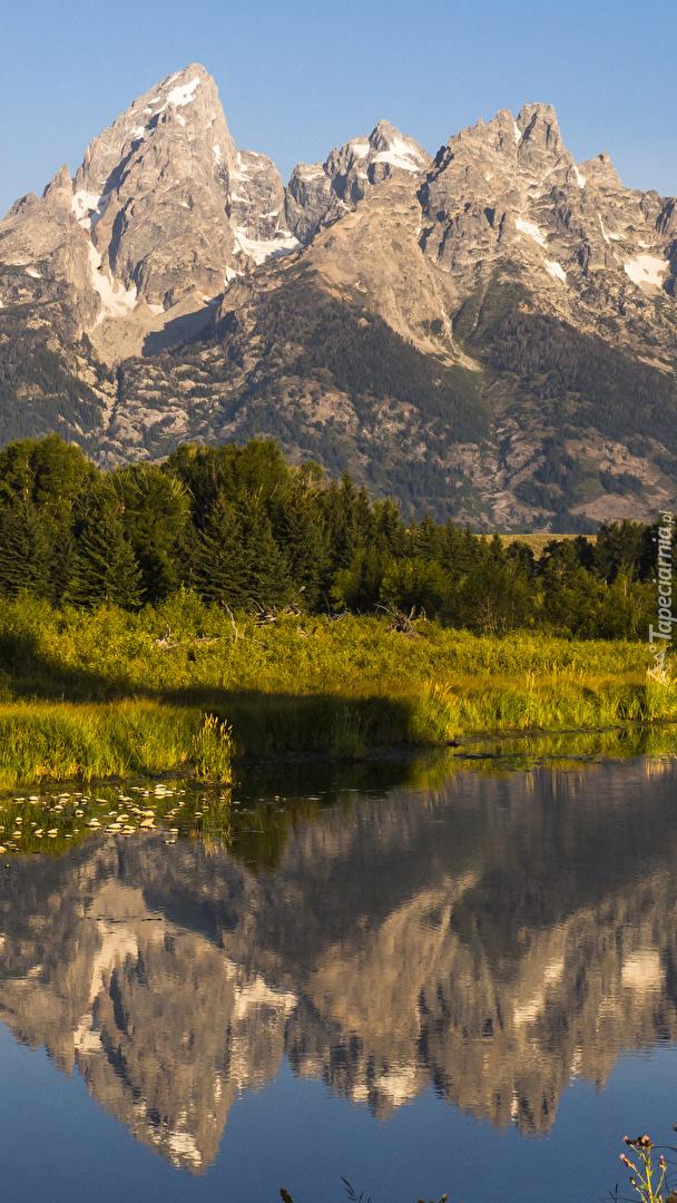 Odbicie gór Teton Range w rzece