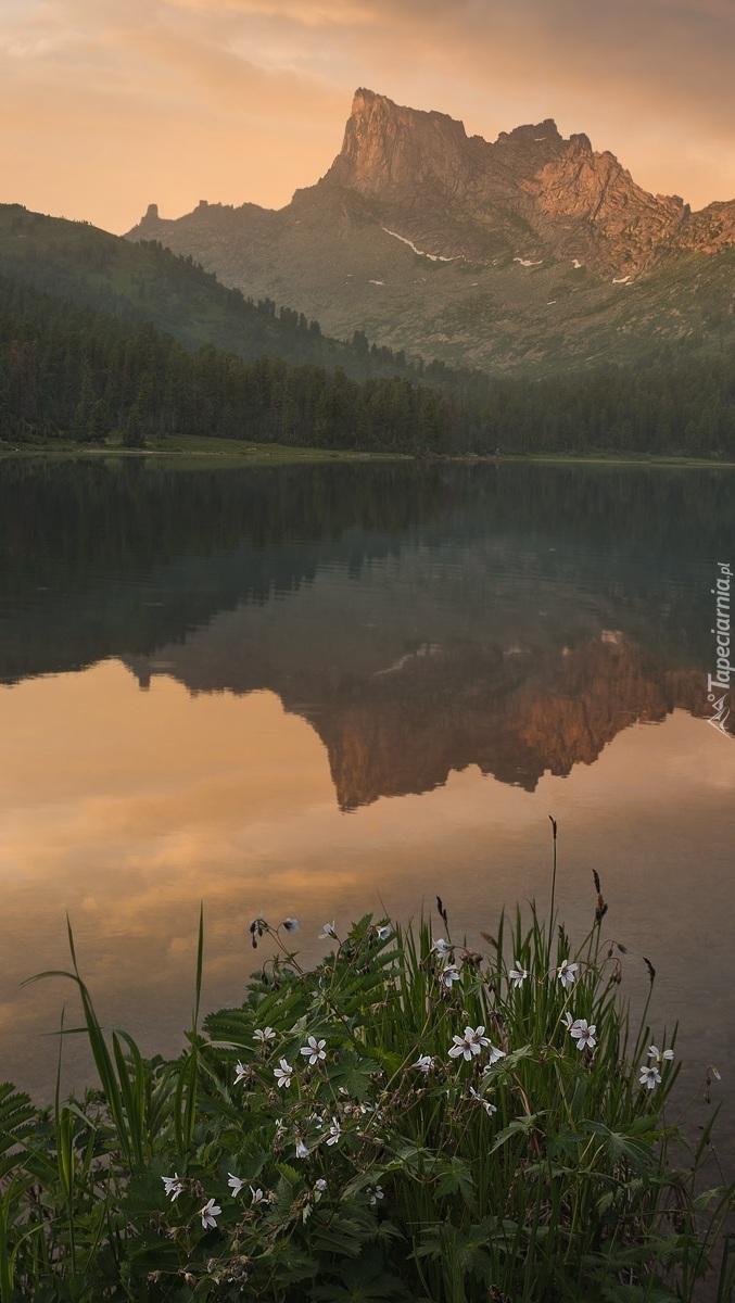Odbicie gór w jeziorze