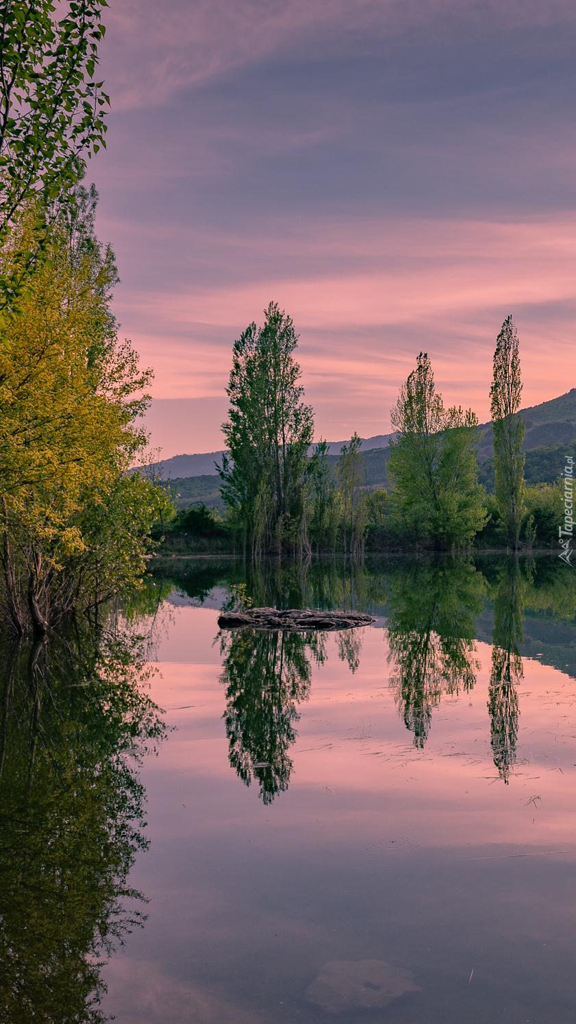Odbicie różowego nieba i drzew w jeziorze