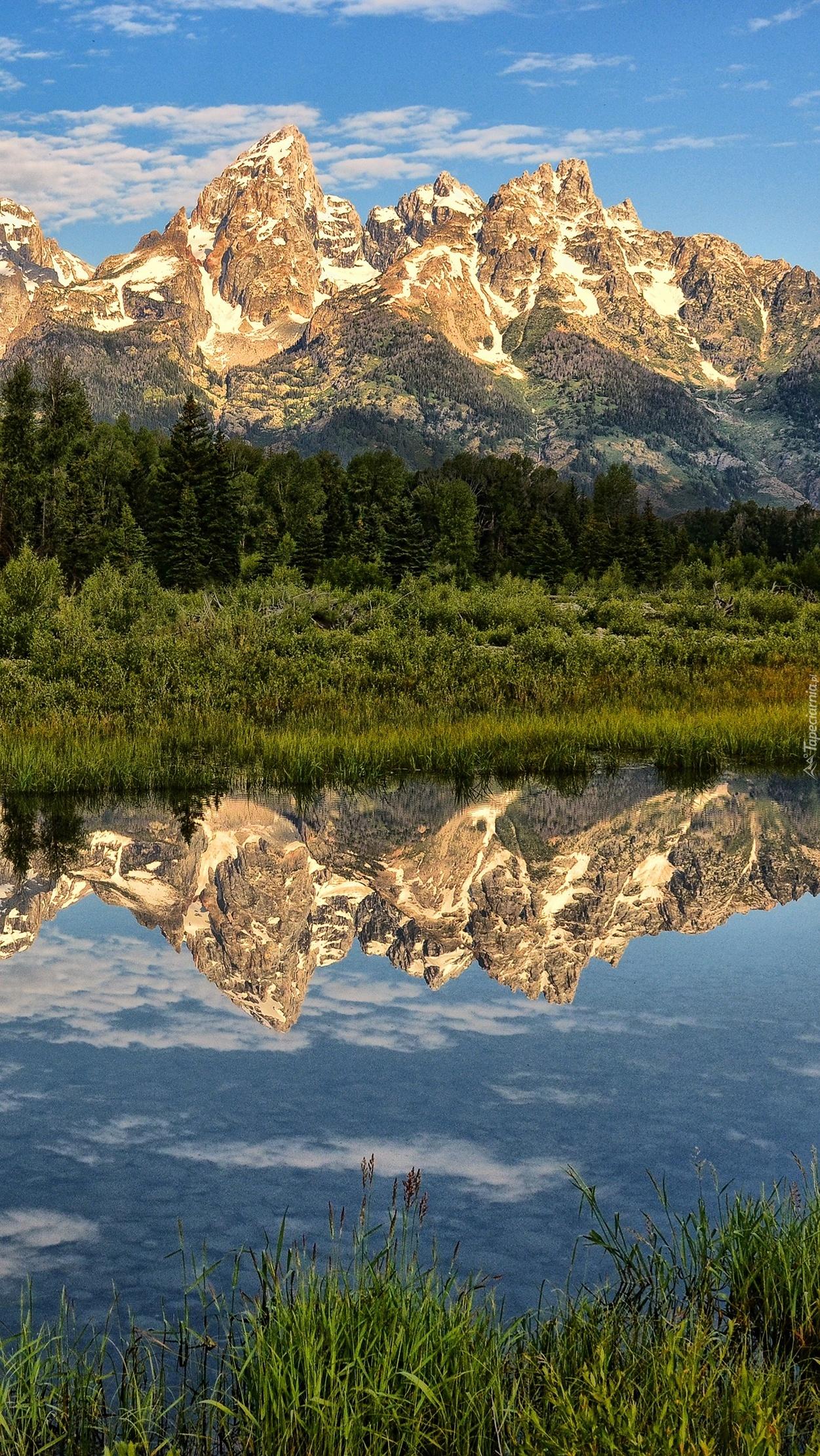 Odbite w jeziorze góry, lasy i trawa