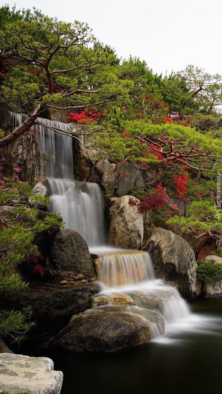 Ogród z wodospadem