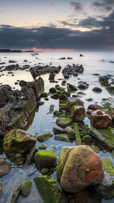 Omszałe skały w morzu